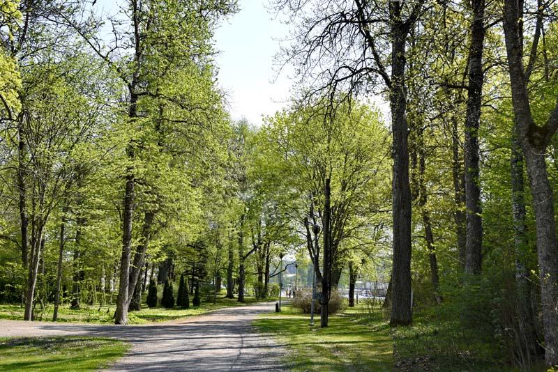 Ruukinpuisto – Leikkipuisto